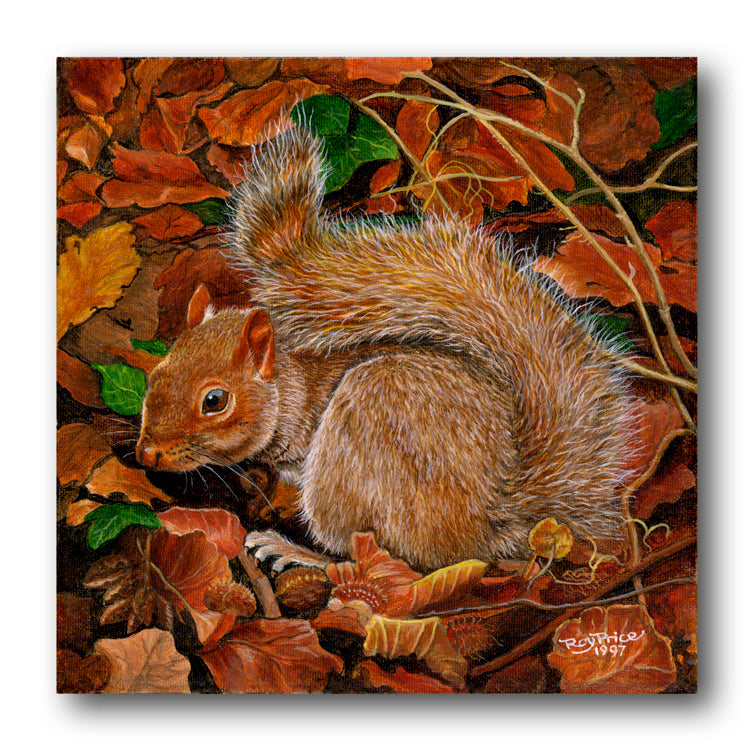 Squirrel Gift Tags Birthday Card from Dormouse Cards
