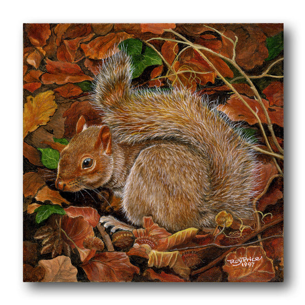Fine Art Squirrel Greetings Card from Dormouse Cards