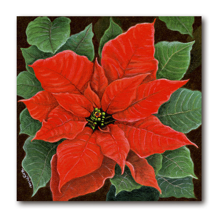 Fine Art Poinsettia Christmas Card from Dormouse Cards