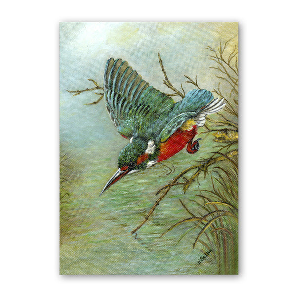Kingfisher Postcards from Dormouse Cards