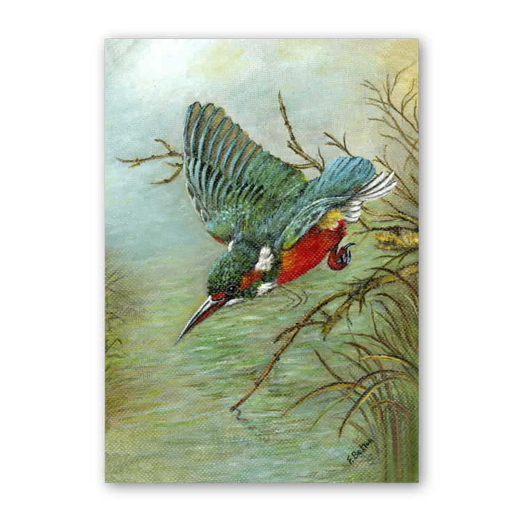 Fine Art Kingfisher Birthday Card From Dormouse Cards