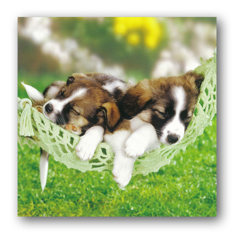 Sleeping Puppies in a Hammock from Dormouse Cards