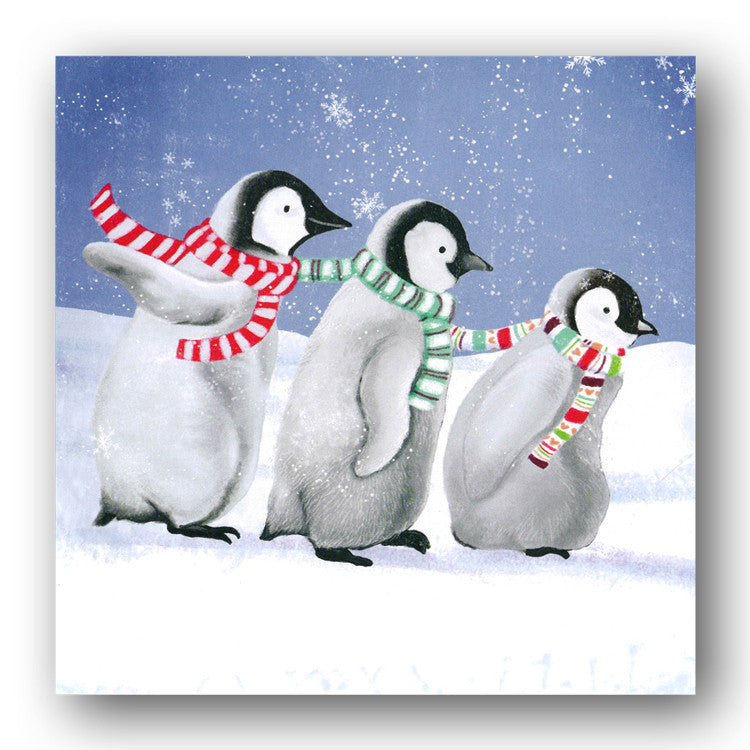 pack of 8 playful penguins christmas cards dormouse cards