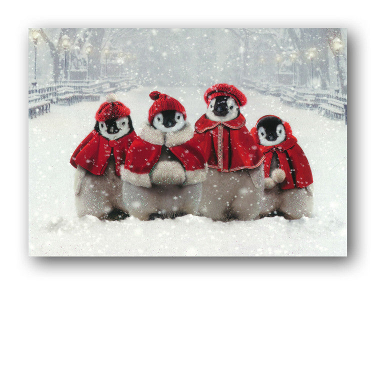 Funny Santa Penguins Christmas Card