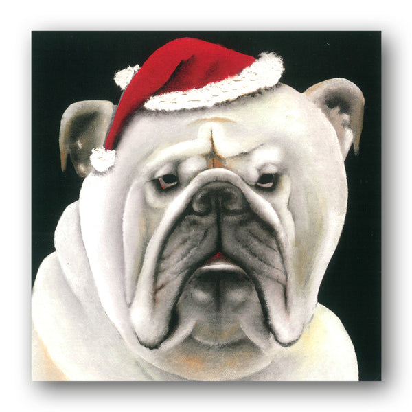 White Bulldog Funny Charity Christmas Cards from Dormouse Cards