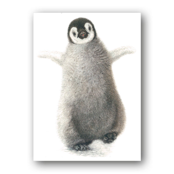Pack of 8 Emperor Penguin Chick Charity Christmas Cards