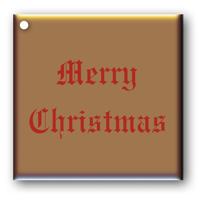 Pack of 10 Merry Christmas Gift Tags Red on Metallic Bronze