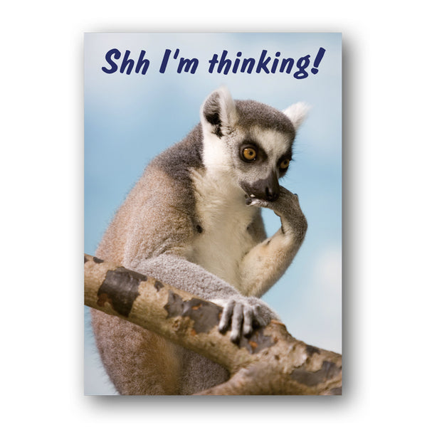 A3 Funny Lemur Laminated Poster from Dormouse Cards