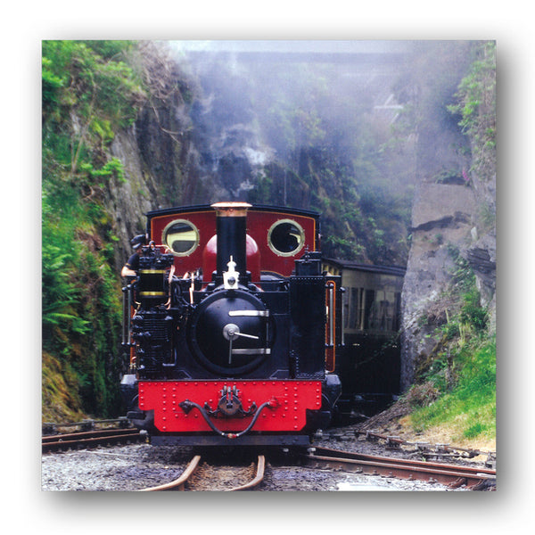 Steam Train Vale of Rheidol Railway Ceredigion Wales Birthday Greetings Card from Dormouse Cards
