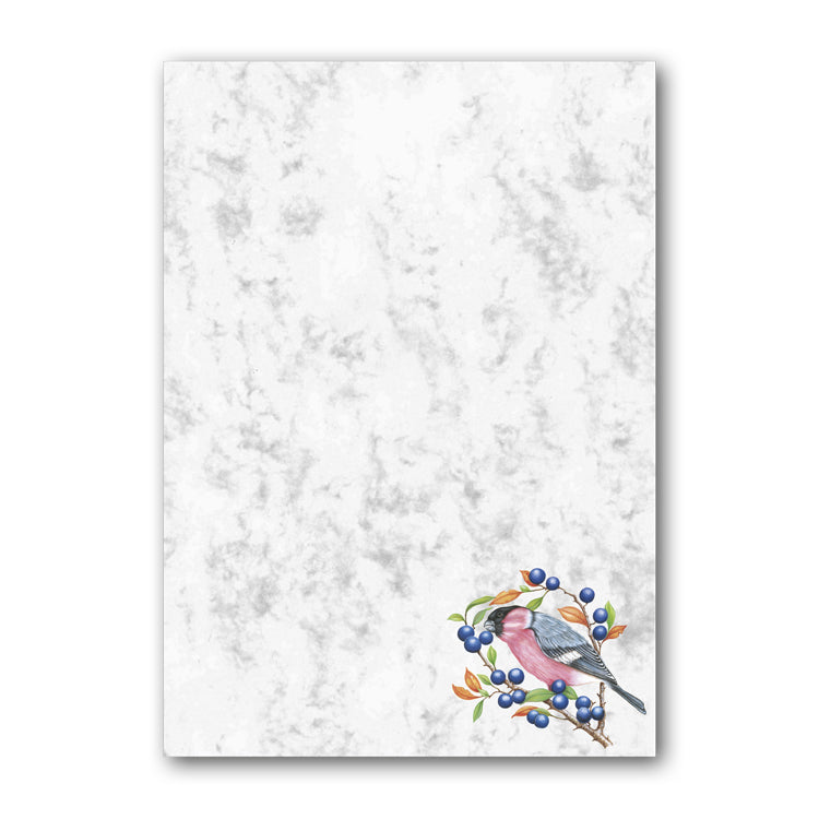 A5 Bullfinch Marble Notepaper from Dormouse Cards