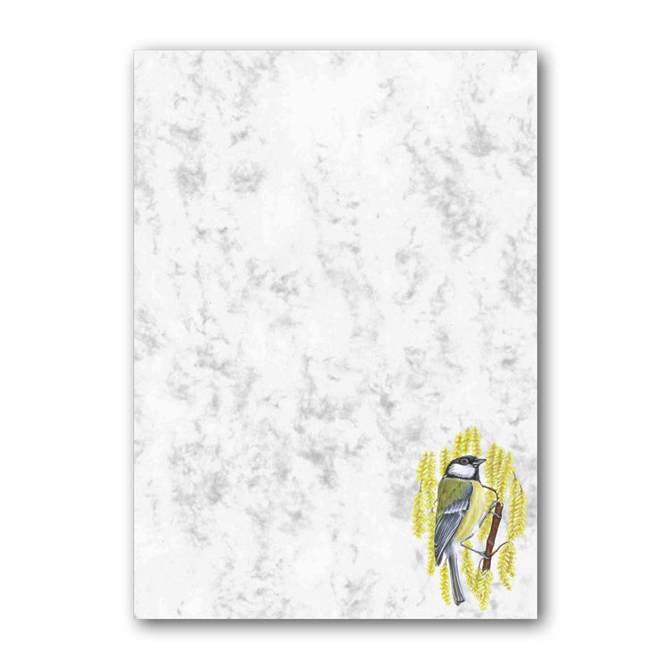 Great Tit Marble Notepaper