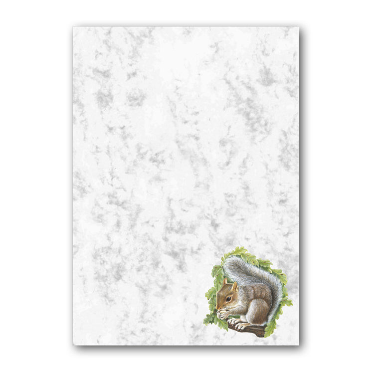 A5 Squirrel Marble Notepaper from Dormouse Cards