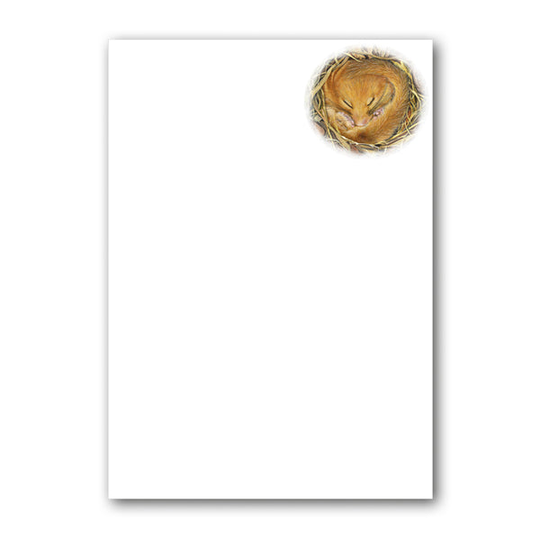 Dormouse Notepaper from Dormouse Cards