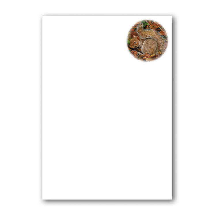Squirrel Notepaper from Dormouse Cards