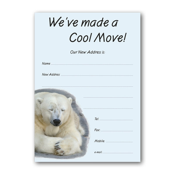 Cool Move Polar Bear Notelets from Dormouse Cards