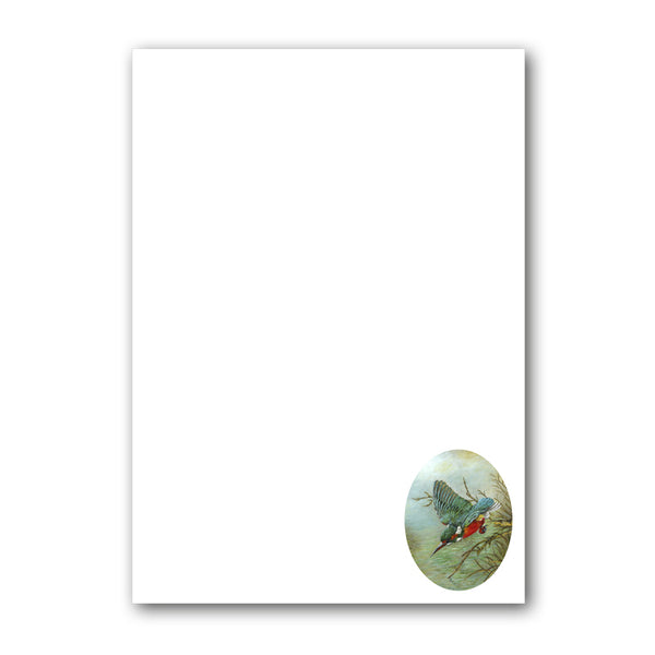 A5 Kingfisher Notepaper from Dormouse Cards