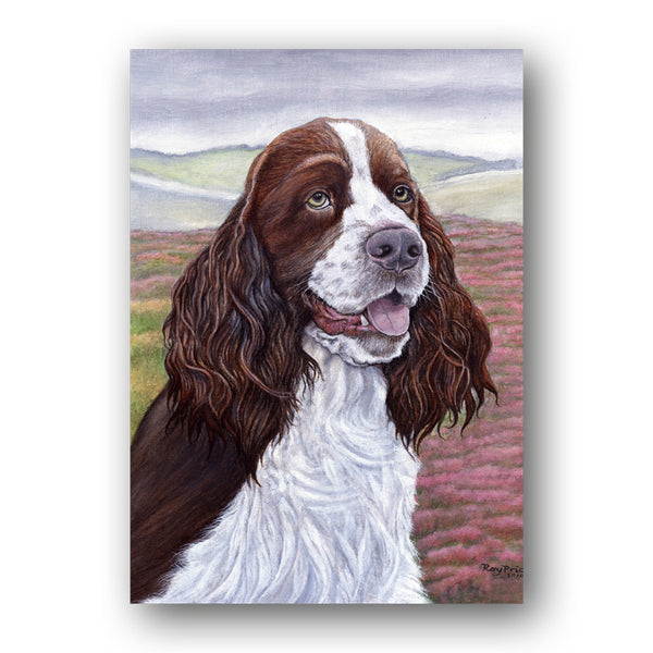 Pack of 5 A6 English Springer Spaniel Notelets from Dormouse Cards
