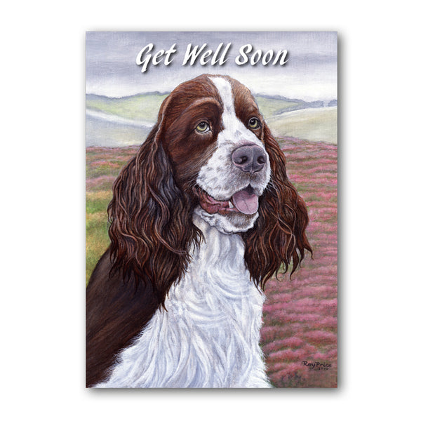 English Springer Spaniel Get Well Soon Card from Dormouse Cards