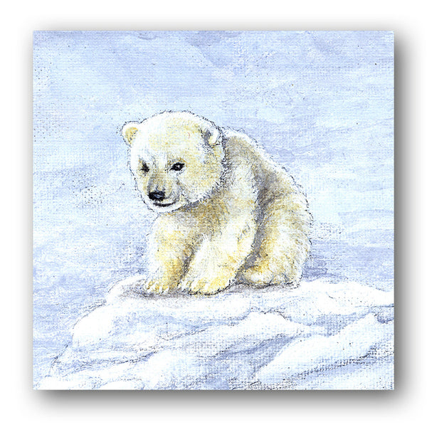 Polar Bear Christmas Cards from Dormouse Cards