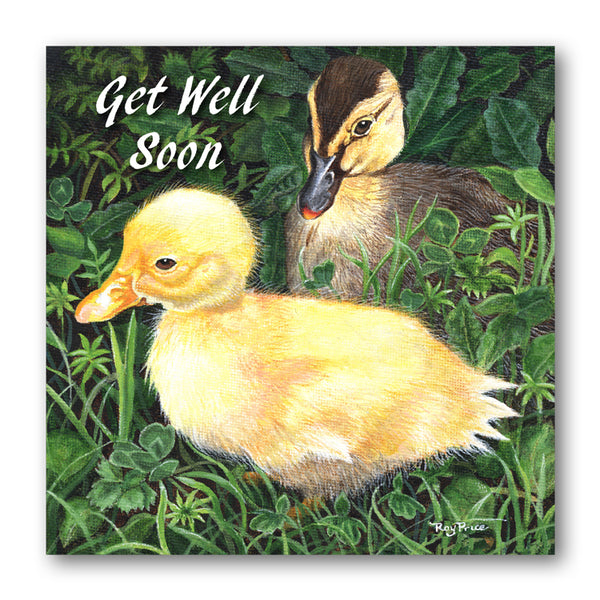 Ducks Get Well Soon Card from Dormouse Cards
