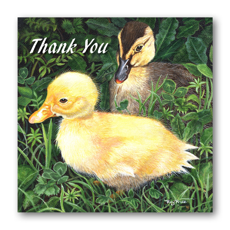 Ducks Thank You Card from Dormouse Cards