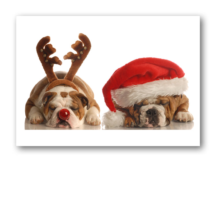 Funny Bulldog Christmas Card