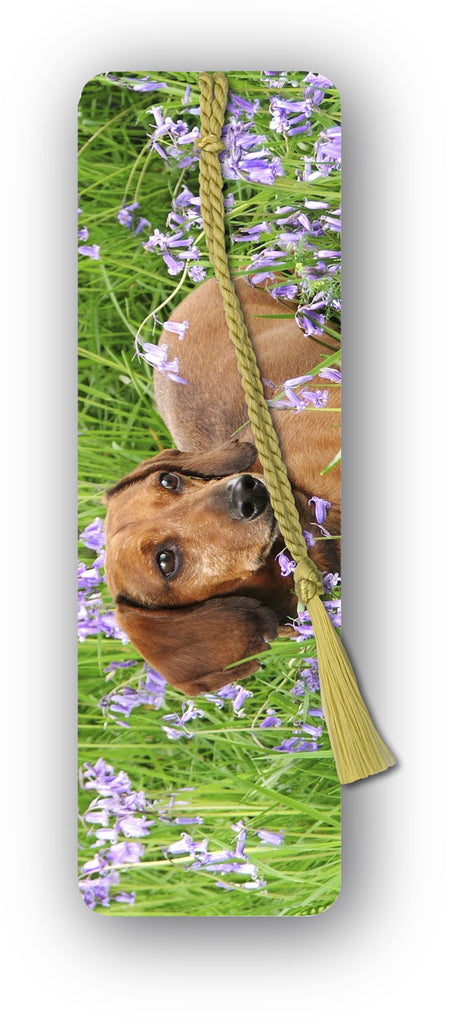 Speck Dachshund in Bluebell Wood Bookmark from Dormouse Cards