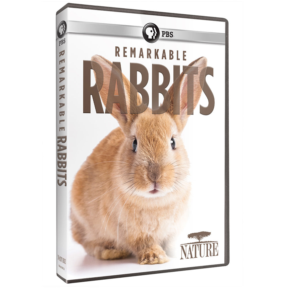 Remarkable Rabbits
