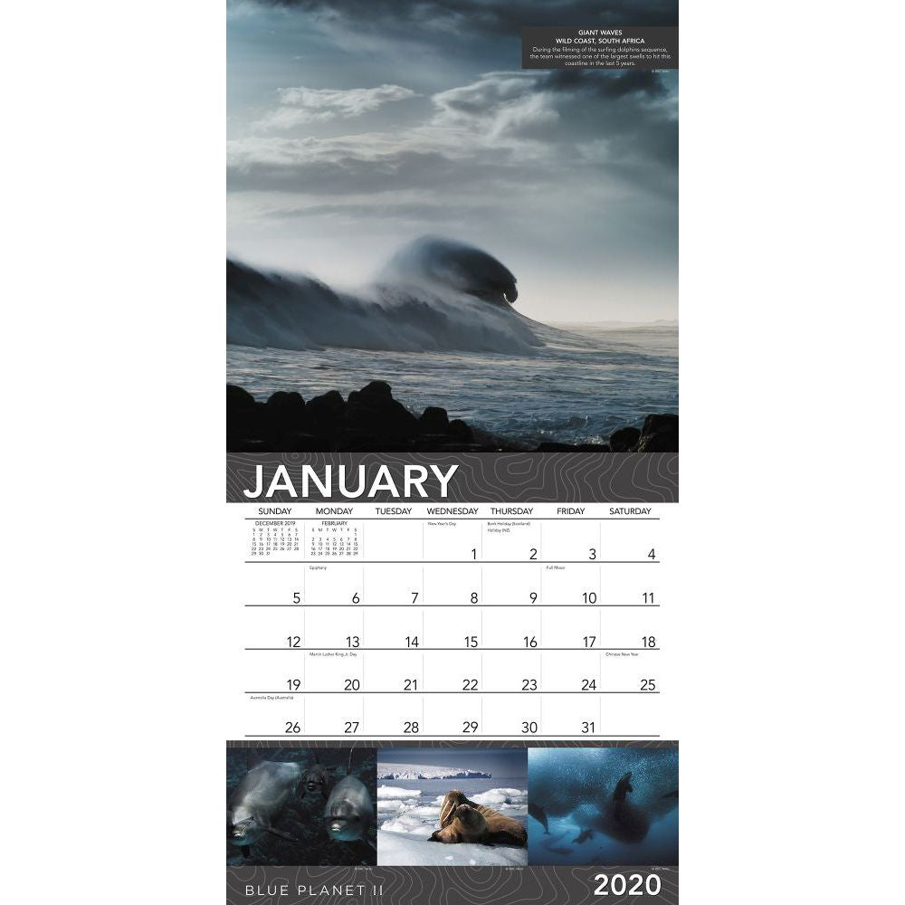 Blue Planet II 2020 Wall Calendar