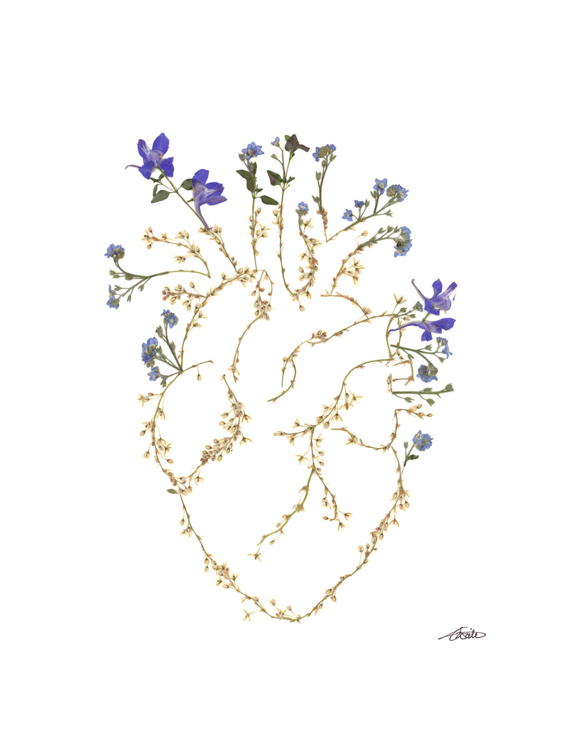 Heart of a Wildflower