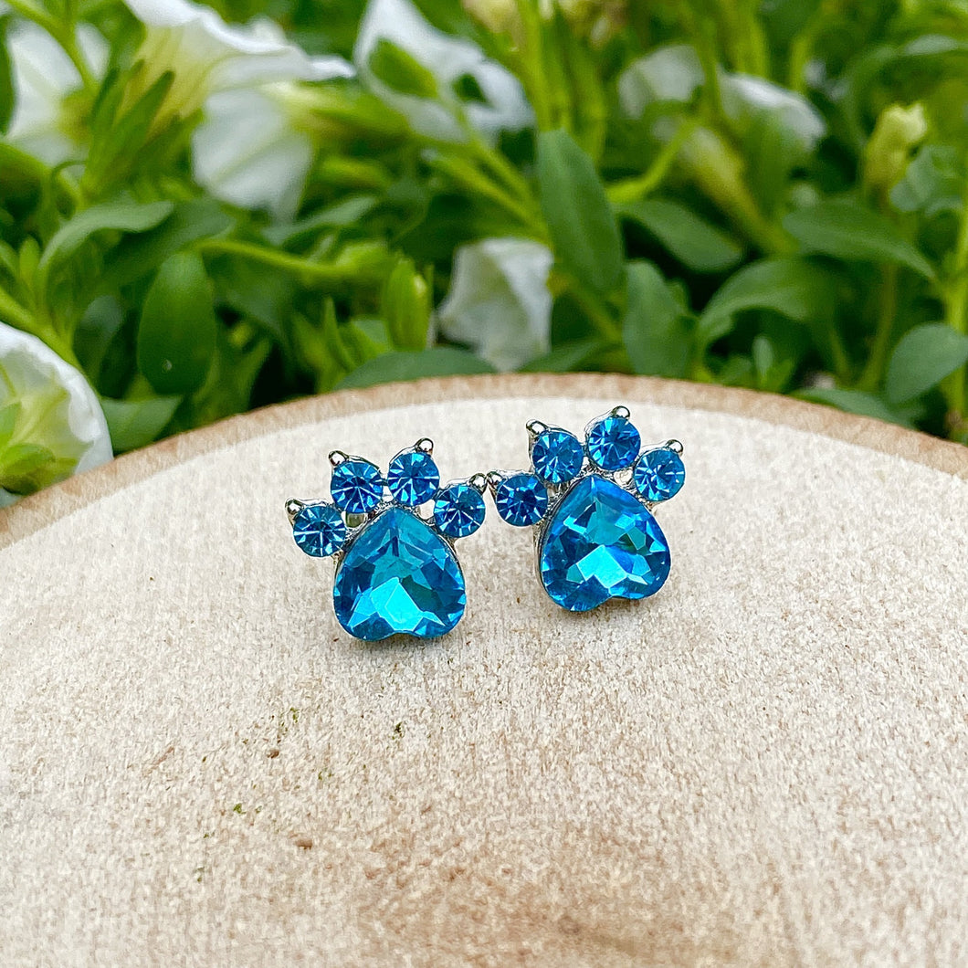 Sky Blue Gemstone Paw Earrings