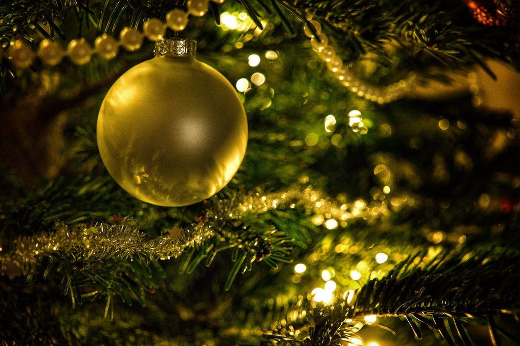 How to cat-proof your Christmas tree during the holiday season