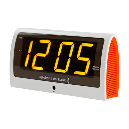 Reminder Rosie Talking Alarm Clock