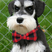 Load image into Gallery viewer, Bowtie Dog Collar
