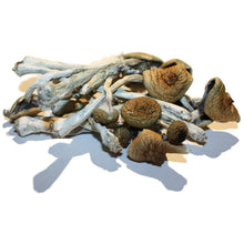 Load image into Gallery viewer, B+ 14g Whole Dried Mushrooms