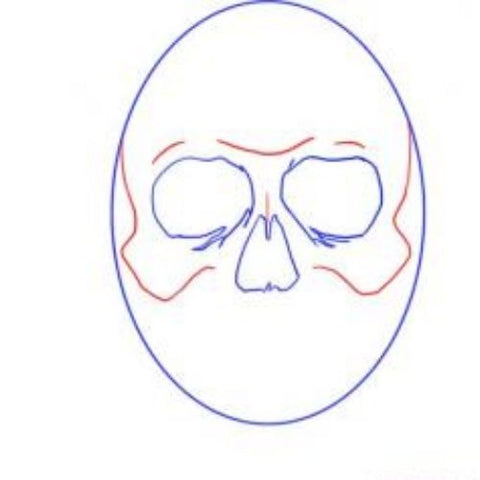 draw a pirate skull with bones