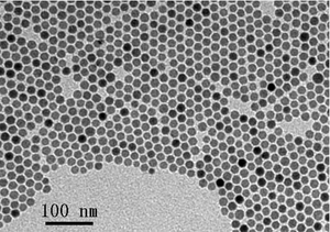 Magnetic Iron Oxide (Fe3O4) Nanocrystals (FEO)