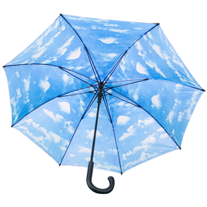 "Air Belgium ""In the sky"" umbrella"