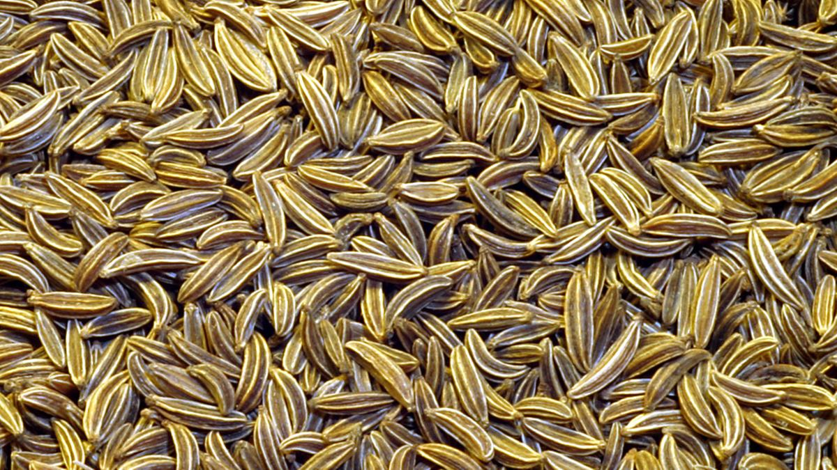 Know Your Spices - Cumin or Jeera