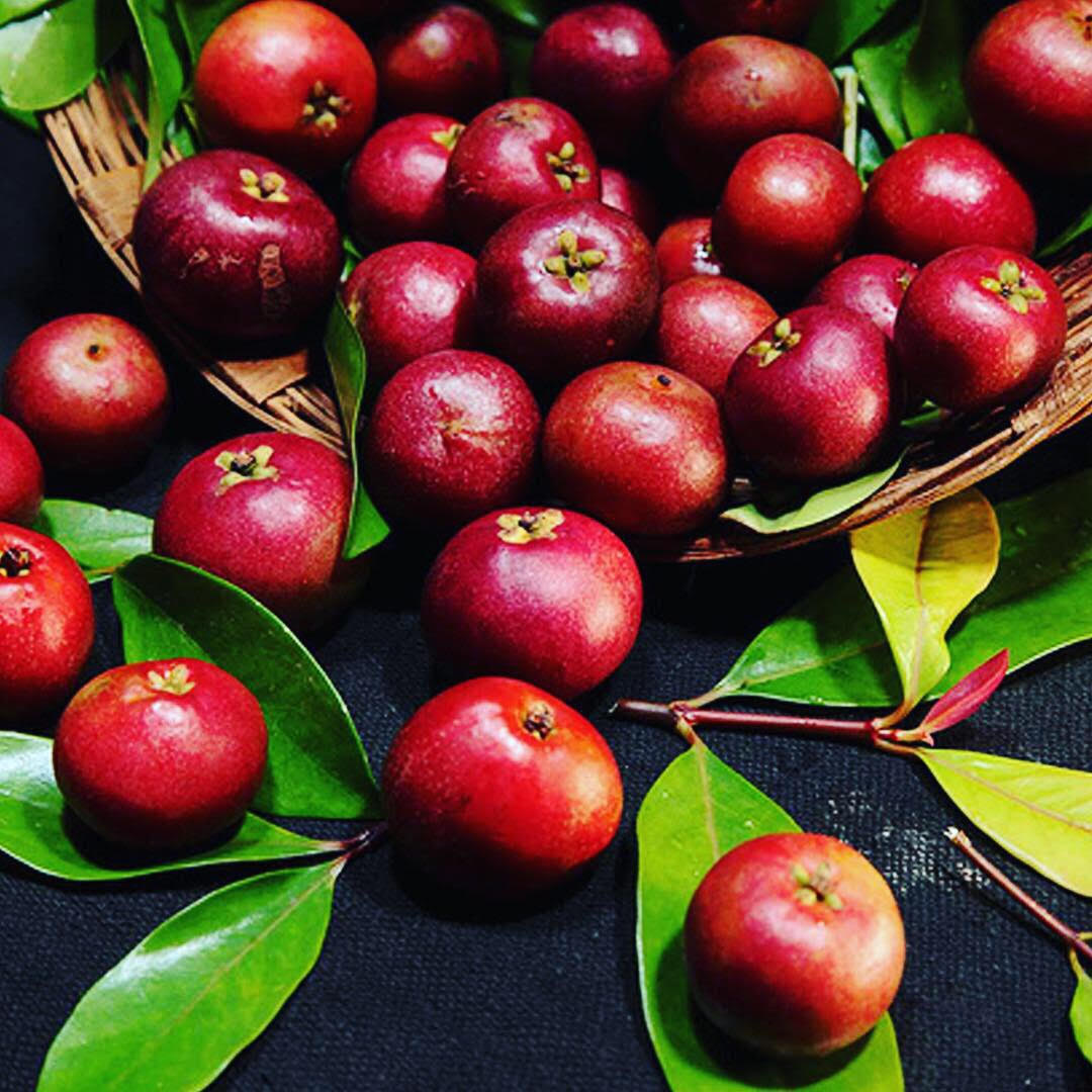 Know Your Spices - Kokum or Mangosteen