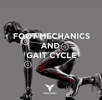 Foot Mechanics and  Gait Cycle