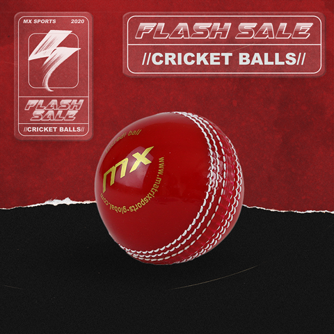 CRICKET BALLS SALE