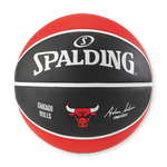 NBA Team Ball - MatrixSports