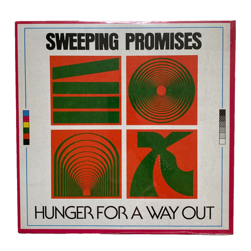 Sweeping Promises: Hunger for a Way Out 12