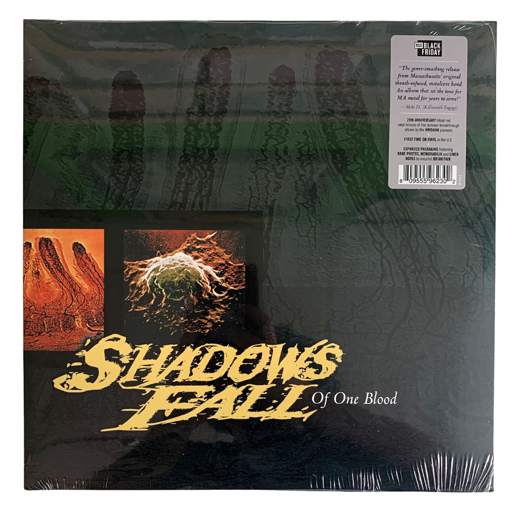 Shadows Fall: Of One Blood 12