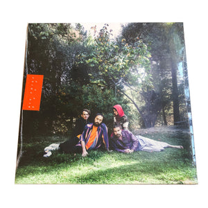 Big Thief: U.F.O.F. 12""