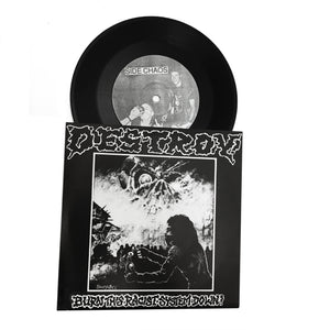 "Destroy: Burn this Racist System Down 7"" (new)"