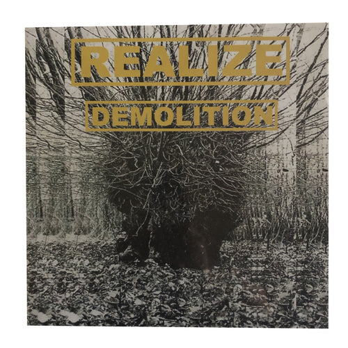 Realize: Demolition 12