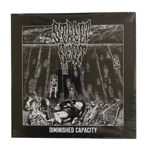 Street Feet: Diminished Capacity 7""