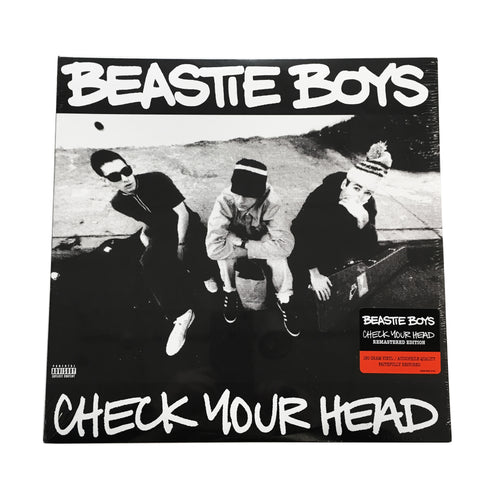 Beastie Boys: Check Your Head 12